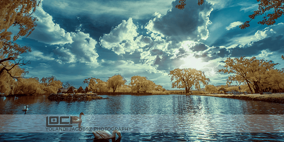 Infrared shooting  –  a whole new world…